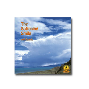 CD - The softening smile
